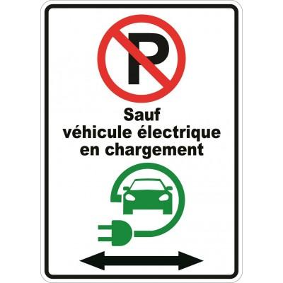Affiche - Stationnement interdit sauf véhicule électrique double