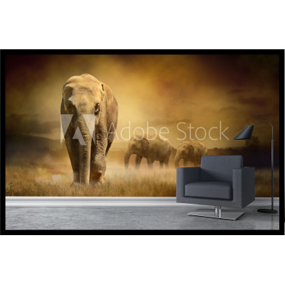 Murale - Éléphant d'Afrique
