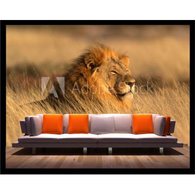 Murale - Lion