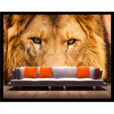 Murale - Face de lion