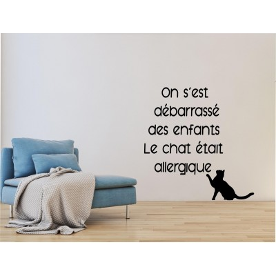 Texte mural - Le chat allergique